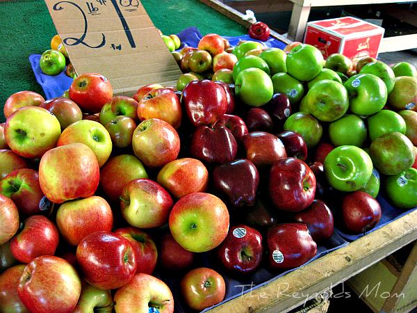 local apples maegal