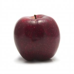 apple sxc.hu on maegal