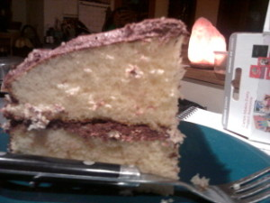 maegals virgin coconut oil cake on maegal