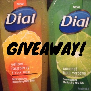 Dial Deep Cleansing Moisturizing Hand Soap giveaway