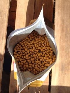 Royal Canin Dry Kitten Food Persian Kibbles