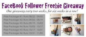 facebook follower freebie giveaway